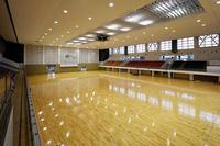 Gymnase central