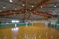 Shimizu-Synthese sportlicher Boden