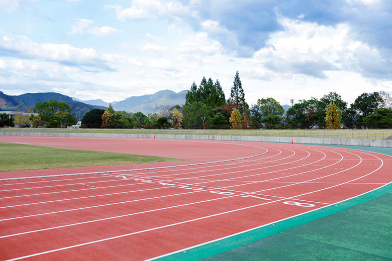 Estadio de deportes de tierra